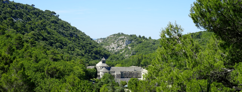 abbaye sénanque gordes provence vaucluse